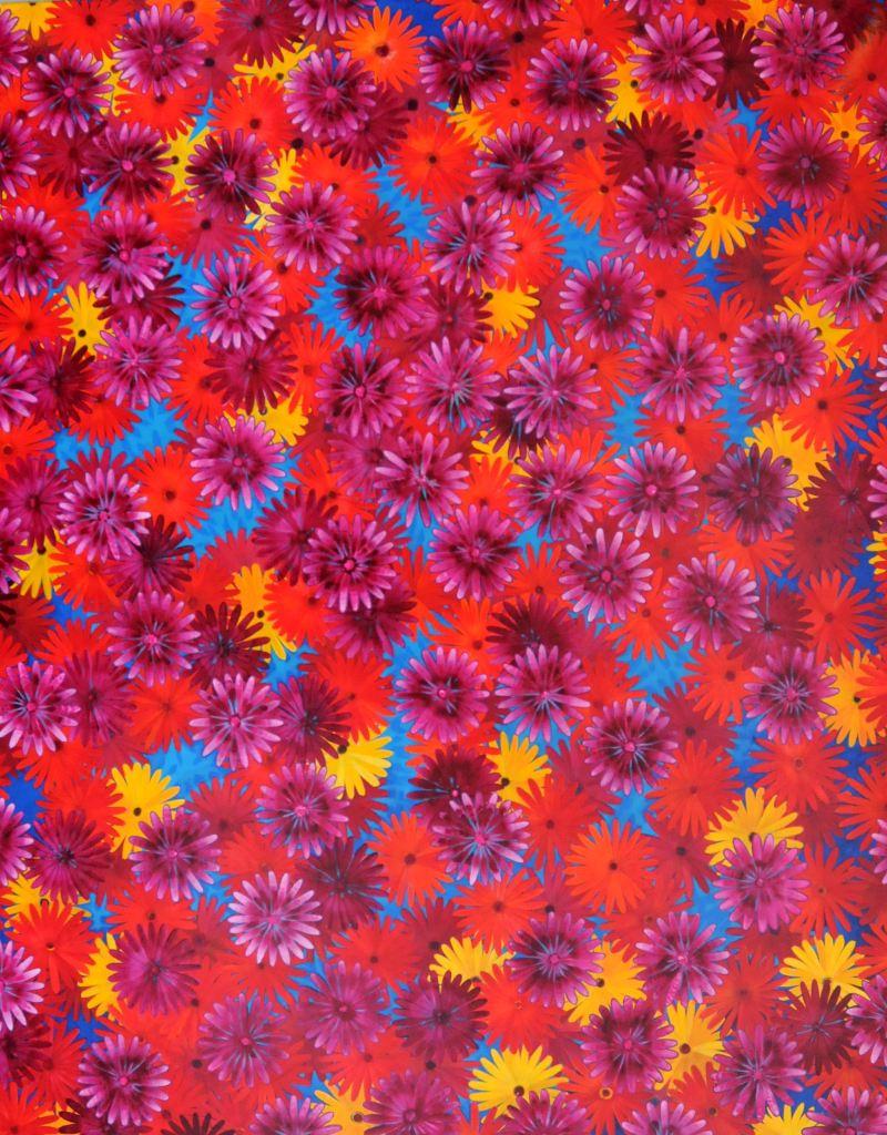rootless/ variecoloured/ acrylic on canvas/ 120 x 150 cm