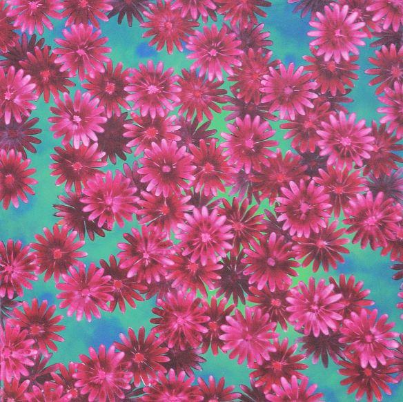 kukat tumman vihreällä virnissa